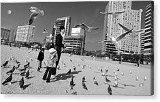 Feed The Birds Acrylic Print