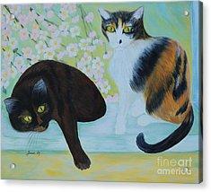 Feline Friends. Inspirations Collection. Acrylic Print by Oksana Semenchenko