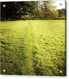 Field Acrylic Print by Les Cunliffe