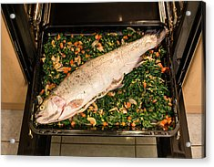 Filled Salmon Trout Acrylic Print by Frank Gaertner