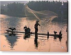 Fisherman Fishing With Cormorants Acrylic Print