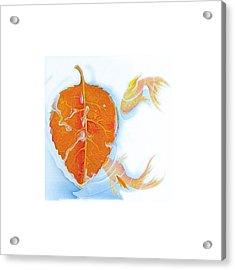 Fishsalad 5 Acrylic Print by Laura Dozor
