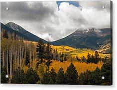 Flagstaff Fall Color Acrylic Print