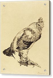 Félix Bracquemond French, 1833 - 1914 Acrylic Print