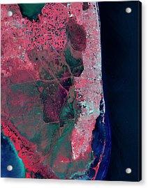 Florida Acrylic Print by Nasa/matt Radcliff/usgs Earth Explorer
