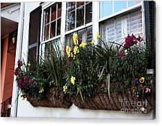 Flowers In The Window Acrylic Print by John Rizzuto