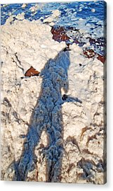 Acrylic Print featuring the photograph Foamscape by Ankya Klay