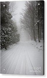 Foggy Winter Road Acrylic Print by Elena Elisseeva