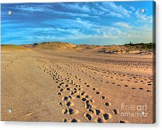 Footprints Through The Dunes Acrylic Print by Twenty Two North Photography