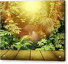 Forest Light Acrylic Print by Les Cunliffe
