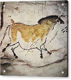 France. Montignac. The Cave Of Lascaux Acrylic Print by Everett
