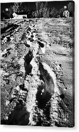 fresh footprints crossing deep snow in field towards small rural village of Forget Saskatchewan Cana Acrylic Print by Joe Fox