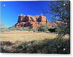 Acrylic Print featuring the photograph From The Shadows by Gary Kaylor