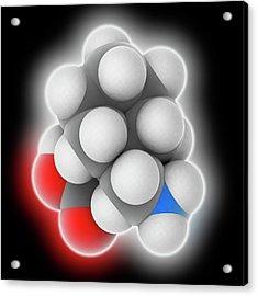 Gabapentin Drug Molecule Acrylic Print by Laguna Design