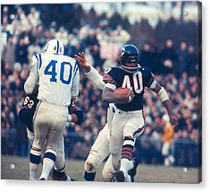 Gale Sayers Acrylic Print by Retro Images Archive