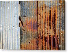 Galvanized Acrylic Print by Peter Tellone