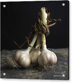 Garlic Acrylic Print by Bernard Jaubert