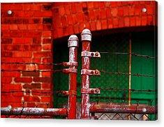 Gate Acrylic Print by Rowana Ray