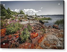 Georgian Bay Iv Acrylic Print
