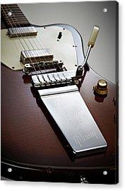 Gibson Firebird Electric Guitars Acrylic Print