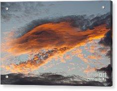 Gloaming Acrylic Print by Michal Boubin