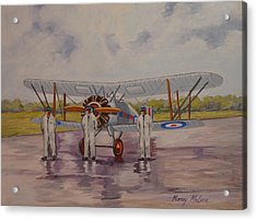 Acrylic Print featuring the painting Gloster Gamecock by Murray McLeod