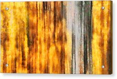 Golden Days Of Autumn Acrylic Print by Dan Sproul
