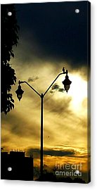 Golden Acrylic Print by Judy Via-Wolff