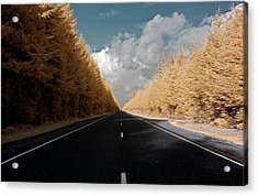 Acrylic Print featuring the photograph Golden Road by David Stine