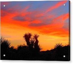 Golden Valley Sunset Acrylic Print