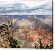Grand Canyon National Park Acrylic Print by Laurel Powell