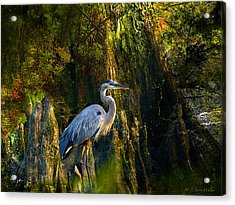 Acrylic Print featuring the digital art Great Blue Heron Slowly Strolling by J Larry Walker
