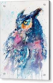 Great Horned Owl Acrylic Print by Kovacs Anna Brigitta
