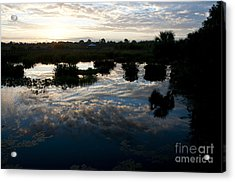 Green Cay Wetlands, Fl Acrylic Print by Mark Newman