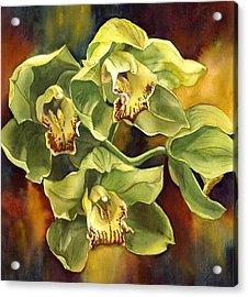 Green Cymbidium Orchid Acrylic Print