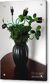 Green Energy Floral Arrangement Of Electrical Plugs Acrylic Print by Amy Cicconi