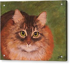 Acrylic Print featuring the painting Green Eyed Kitty by Janet Greer Sammons