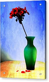 Green Vase Acrylic Print by Donald Davis