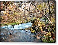 Greer Spring  Acrylic Print by Marty Koch
