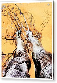 Growing Old Together  Acrylic Print