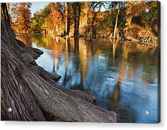 Guadalupe River, Texas Hill Country Acrylic Print by Larry Ditto