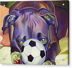 Guard Dog Acrylic Print