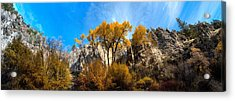 Acrylic Print featuring the photograph Guardians by David Andersen