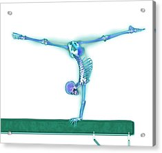 Gymnast Balancing On A Beam Acrylic Print by Gustoimages/science Photo Library