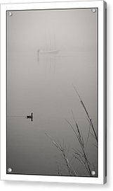 Harbor Fog No.2 Acrylic Print