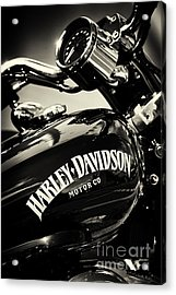 Harley D Sepia Acrylic Print by Tim Gainey