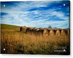 Hay Bales And Contrails Acrylic Print by Amy Cicconi