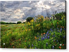 Heaven's Light  Acrylic Print