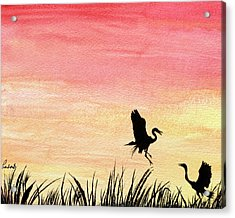 Herons At Sunset Acrylic Print by Prashant Shah