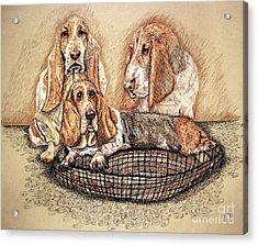 Hess'er Puppies Acrylic Print by Linda Simon